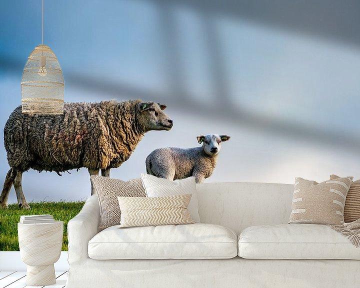 Impression: Moeder met dochter - lammetjes op Texel sur Texel360Fotografie Richard Heerschap