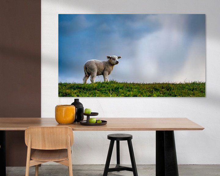 Impression: Lammetje op Texel sur Texel360Fotografie Richard Heerschap