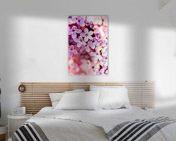 Flower Bokeh von Geert Huberts