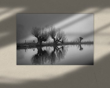Knotwilgen in de Mist langs de Kromme Rijn, Provincie Utrecht, Nl von Arthur Puls Photography