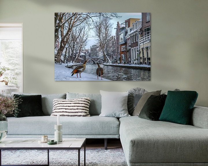 Impression: Two egyptian geese look out over the snow covered waterside of the Old Canal, Utrecht, the Netherlan sur Arthur Puls Photography