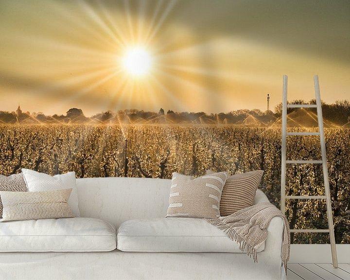Sfeerimpressie behang: Morgenzon boven de boomgaard van Bart Nikkels