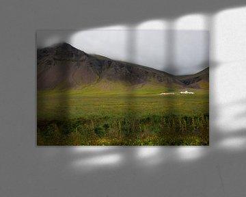 Wonen op IJsland van Emilie Luikinga