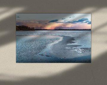 Hoornsemeer congelé sur Sandra de Heij