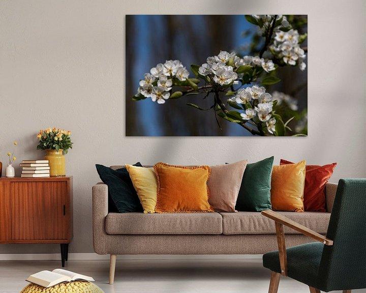 Beispiel: Weiße blüte von Ingrid Aanen