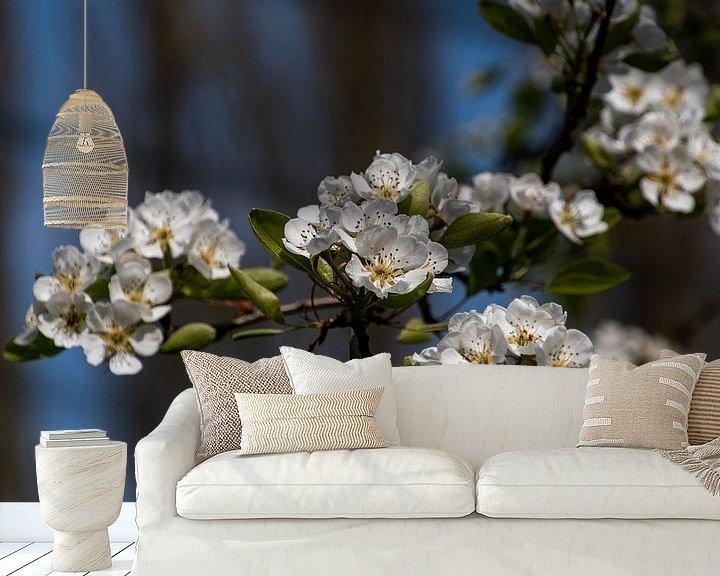 Beispiel fototapete: Weiße blüte von Ingrid Aanen