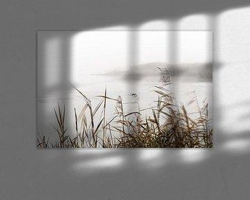 Nebelstimmung im Oderbruch van Ralf Lehmann