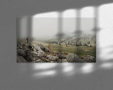 Mist über Velika Planina von Paulien van der Werf