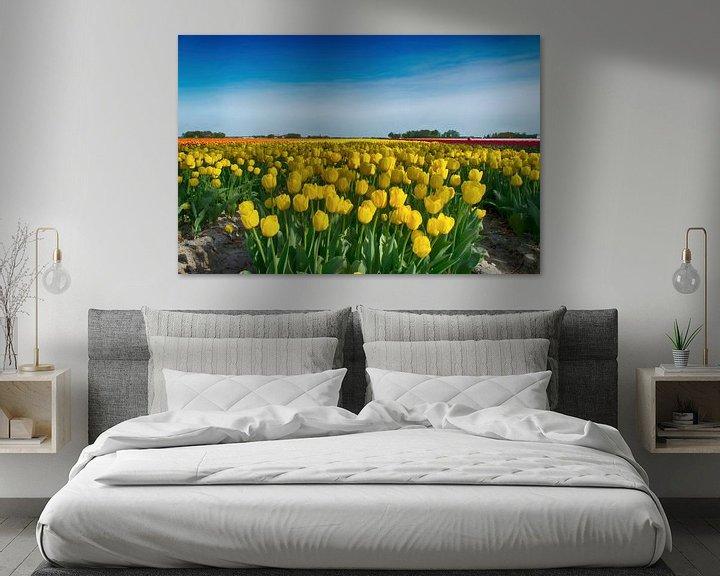 Sfeerimpressie: Gele tulpen van Sandra de Heij