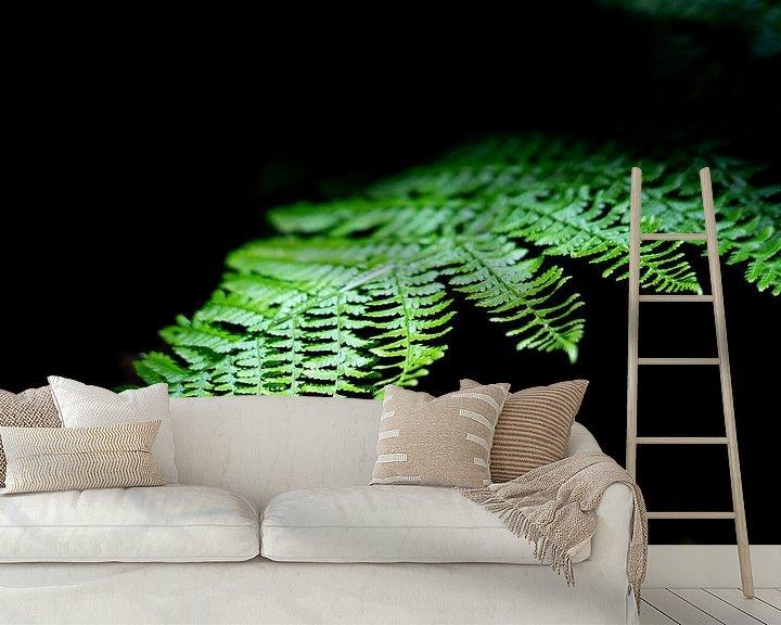 Sfeerimpressie behang: Jungle plant licht op in het zonlicht van Tomas Grootveld