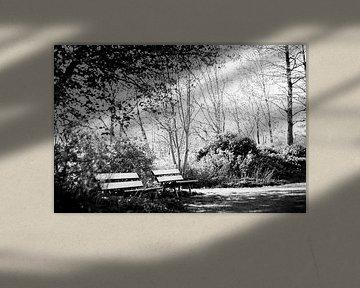 Artistiek schot van bankjes in het park von Maarten Langenhuijsen