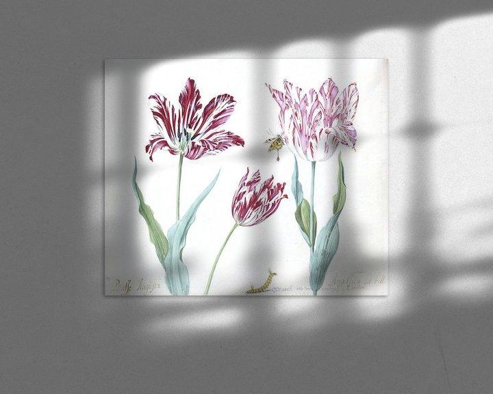 Sfeerimpressie: Drie tulpen met rups en vlinder, Jacob Marrel