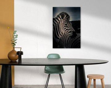 Zebra in Kruger nationaal park Zuid-Afrika von Lorenzo Holtkamp