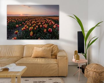 Typische holländische Tulpenfelder - rote / gelbe Tulpen von Thijs van den Broek