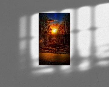 Sonnenuntergang bei Nacht von Goud Vis