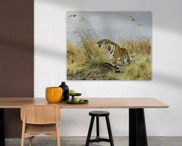 Königstiger mit getöteter Nijlgau-Antilope, Richard Friese