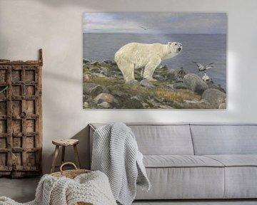 Eisbär und Eiderenten an der Küste, Richard Friese