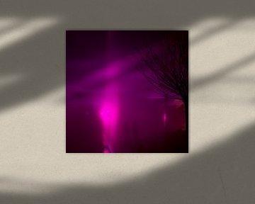 GLOW festival paarse nevel van Greetje van Son
