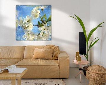 Frühlingsblüte von Heike Hultsch