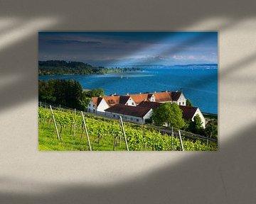 Panorama van het Bodenmeer van Reiner Würz / RWFotoArt