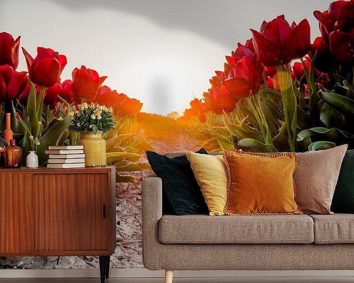 Beispiel fototapete: Ein roter Tulpenpfad von Martijn Tilroe