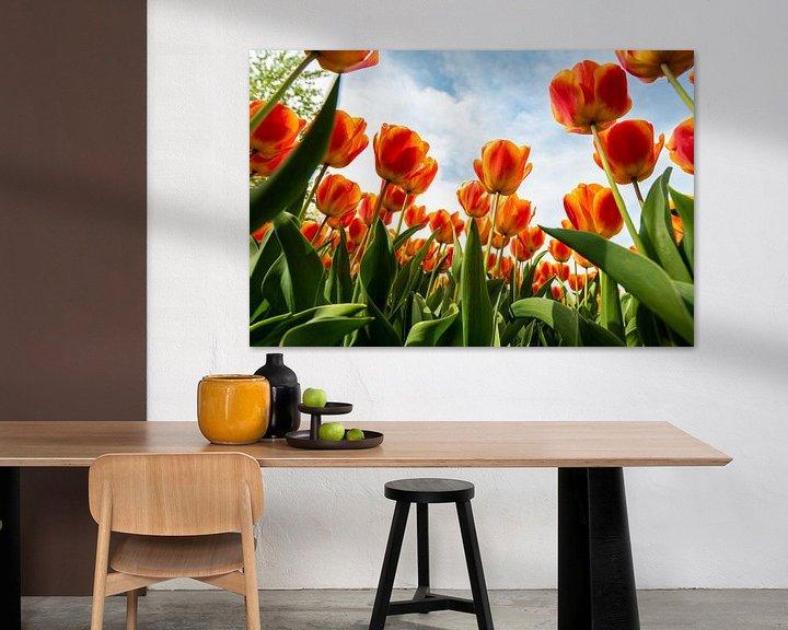 Sfeerimpressie: Oranje Tulpen tegen de Hemel van Brian Morgan