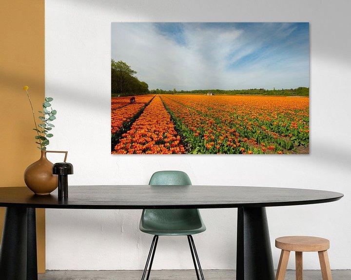 Sfeerimpressie: Tulpenveld in Holland. van Brian Morgan