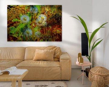 Concept abstract : Dandelions / Pusteblumen von Michael Nägele