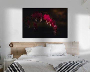 Broken heart flower van Sandra Hazes