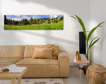 Panorama Almsee von Coen Weesjes
