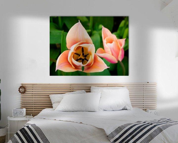 Beispiel: Tulpe von oben von Martijn Tilroe