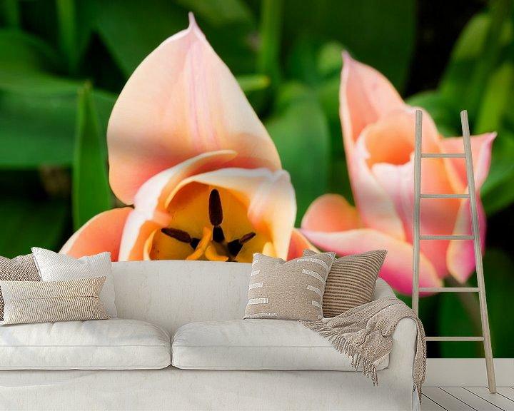 Beispiel fototapete: Tulpe von oben von Martijn Tilroe