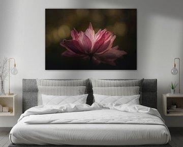 Pink flower beauty van Sandra Hazes