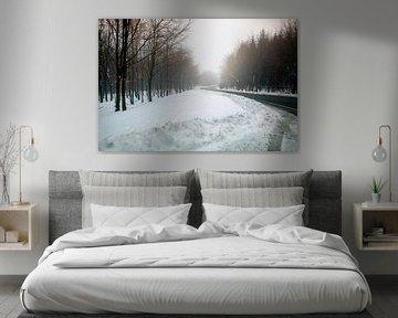 sneeuw landschap van Kristof Ven