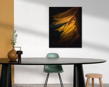 Sunflower dancing in the wind van Sandra Hazes