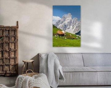 Paard in de bergen van Coen Weesjes