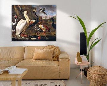 Ein Pelikan und andere Vögel auf dem Wasser, Umkreis von Melchior d'Hondecoeter