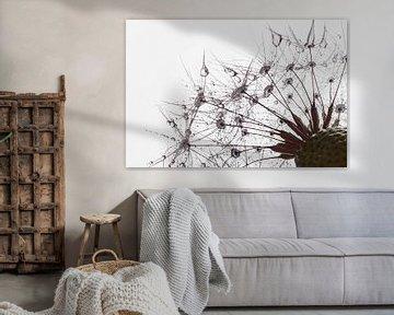 a dandelion in the morning van Elianne van Turennout