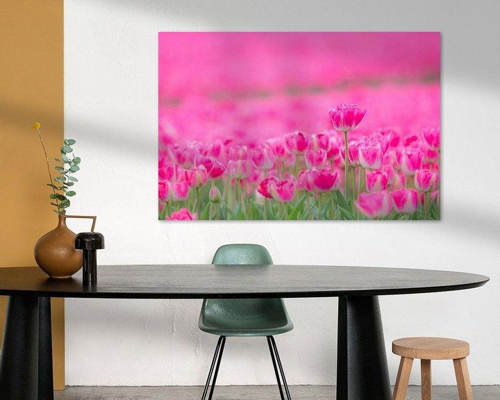 Beispiel: Tulpen von Martzen Fotografie