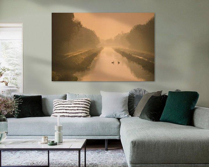 Sfeerimpressie: Zwanen in het gouden ochtendlicht van Martzen Fotografie