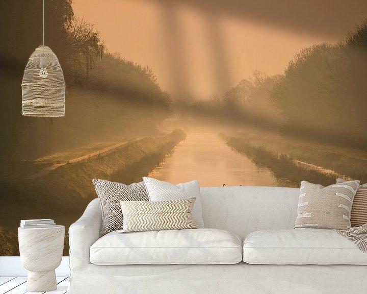 Sfeerimpressie behang: Zwanen in het gouden ochtendlicht van Martzen Fotografie
