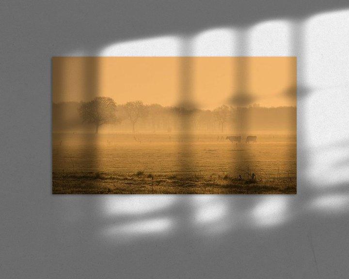 Sfeerimpressie: koeien in vroege ochtend van Martzen Fotografie