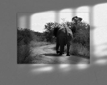 Weglopende Zuid-Afrikaanse olifant von Mylène Amoureus