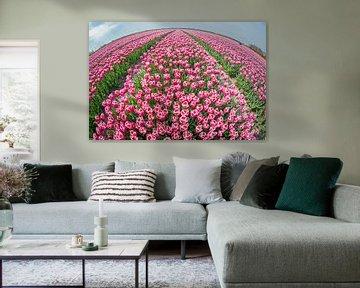 Tulpen im Sommer von Peter de Jong