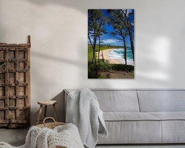 Donkey Beach - Hawaii van Gerard Van Delft