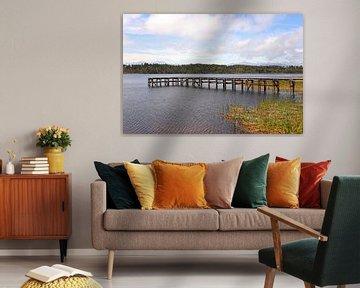 Het vissersbalkon / Mahinapua Lake