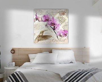 Kolibri und Orchidee van christine b-b müller