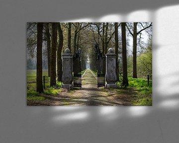 Eingangstor in der Einfahrt Heeswijk Schloss von Ingrid Aanen