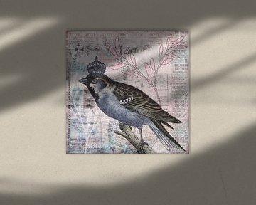 King of the Birds van Andrea Haase