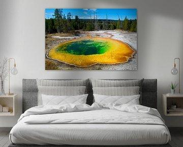 Morning Glory Pool in Yellowstone NP von René Roelofsen